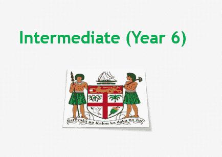 Fiji Intermediate Examination Results 2020